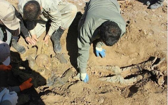 تصاویر پیکر مطهر ۱۷۵ غواص شهید عملیات کربلای ۴