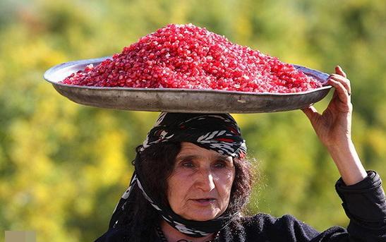 جشنواره ملی انار در کوهدشت برگزار می شود